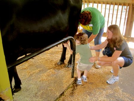 A Visit To Green Meadows Farm