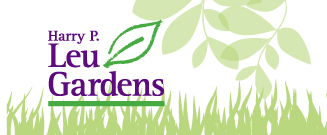 Treat Dad To A Free Father's Day Stroll At Leu Gardens