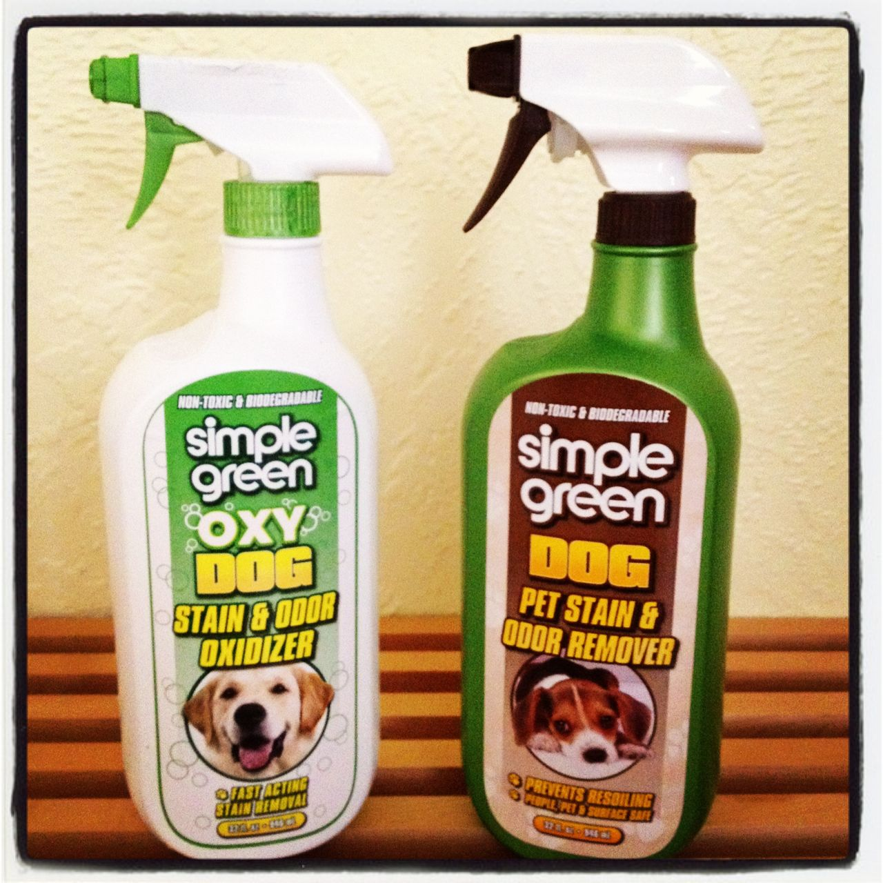 Simple Green OXY DOG and BIO DOG Pet Stain & Odor Remover Review & Giveaway