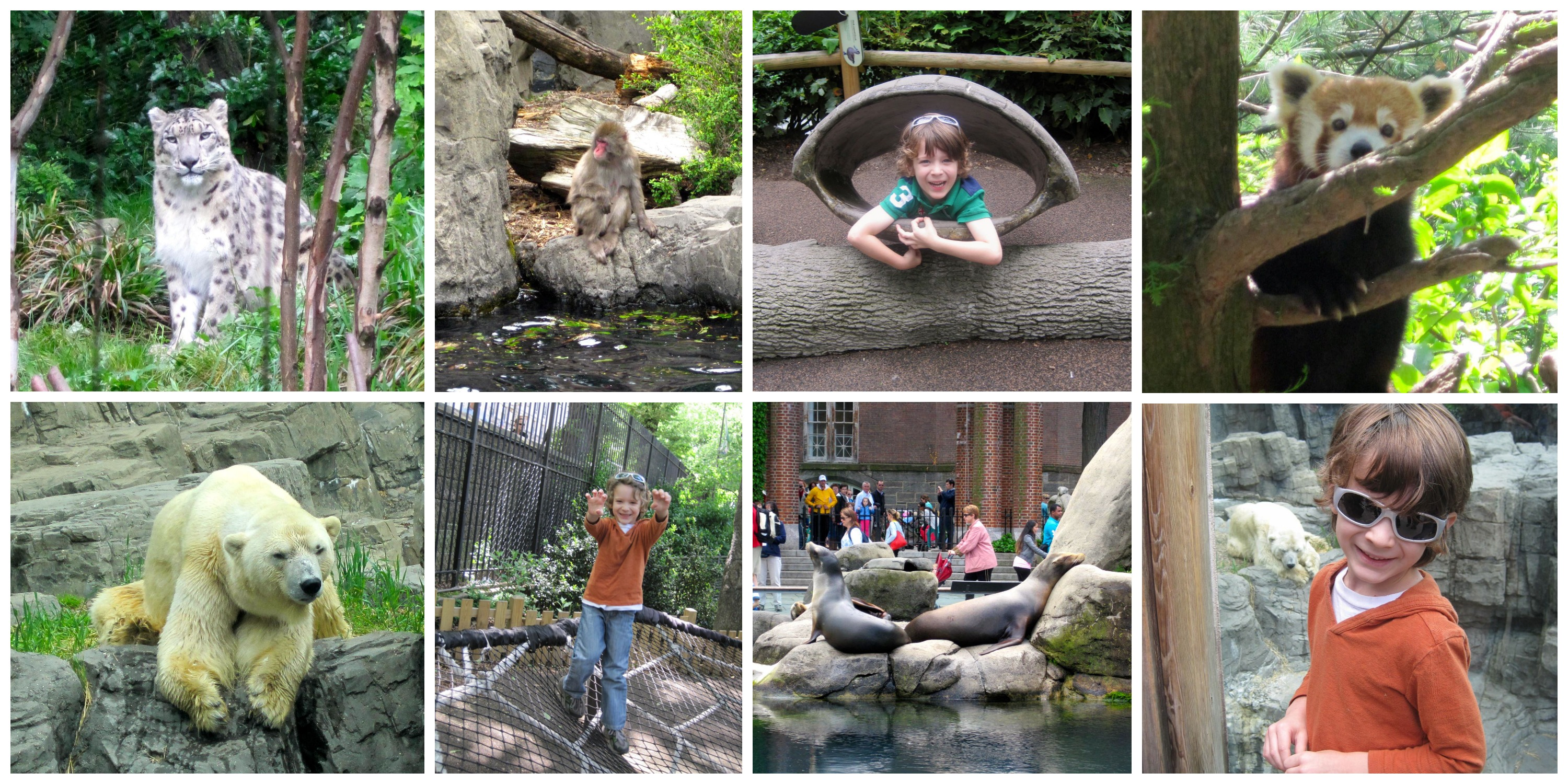 CentralParkZoo