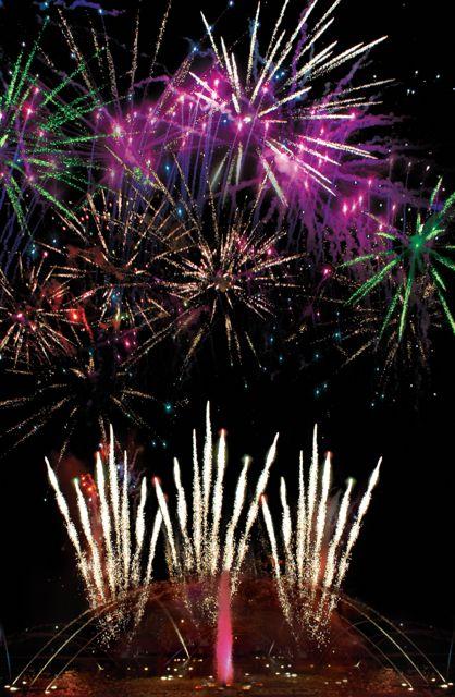 Fireworks at SeaWorld Orlando