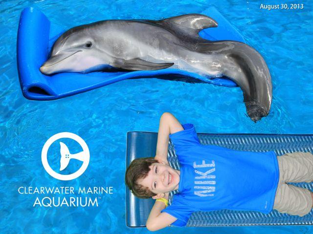 Visting Winter At Clearwater Marine Aquarium