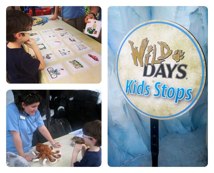 Wild Days Kids Stops
