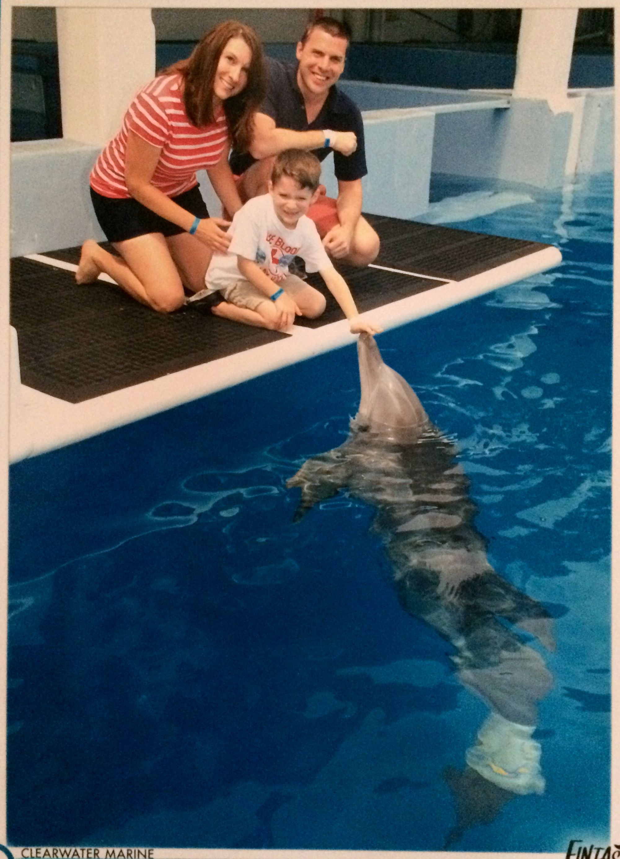 A Birthday Wish To Meet Winter The Dolphin