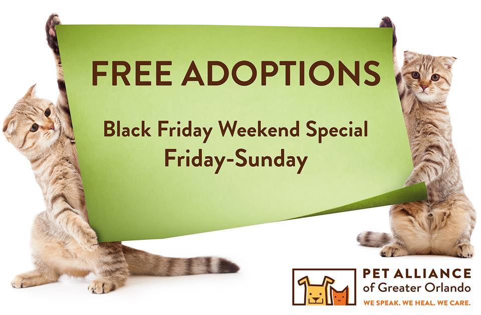 Pet Alliance Free Adoptions