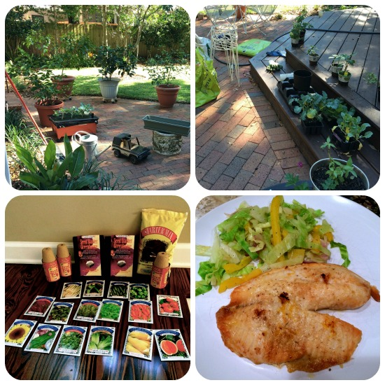 Gardening  and a flavorful Lean & Green meal (baked tilapia with steamed cabbage and peppers).