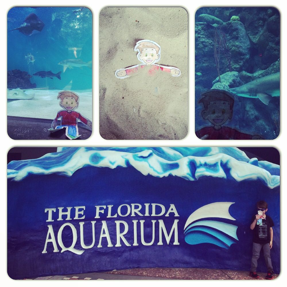 Florida Adventures For Flat Stanley