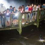 Beat The Heat And Experience Gator Night Shine At Gatorland