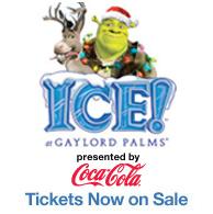 Christmas at Gaylord Palms Resort Makes Holiday Dreams Come True
