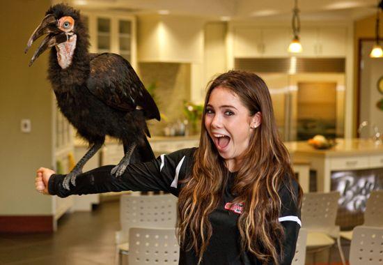 Team USA Olympians Visit Animal Athletes At Busch Gardens Tampa Bay