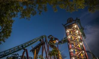 Tampa, Fire Up Your Summer At Busch Gardens & Adventure Island
